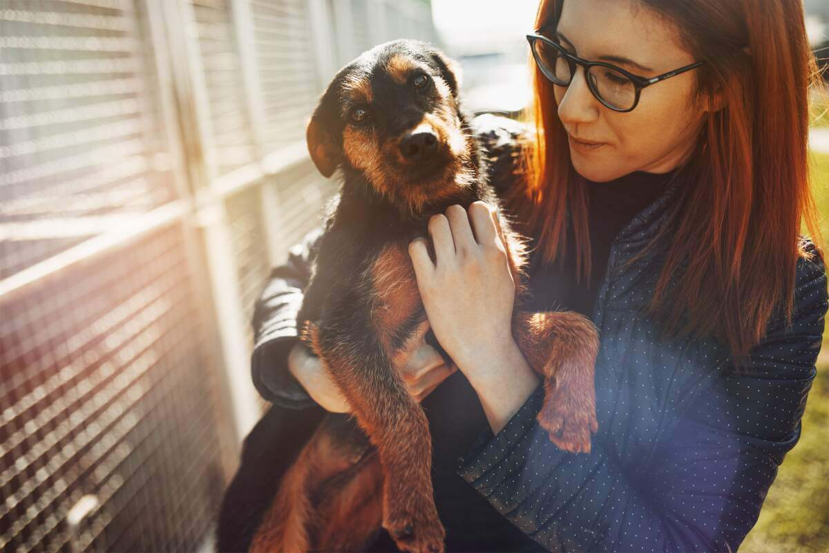 Woman holding puppy in front of kennels